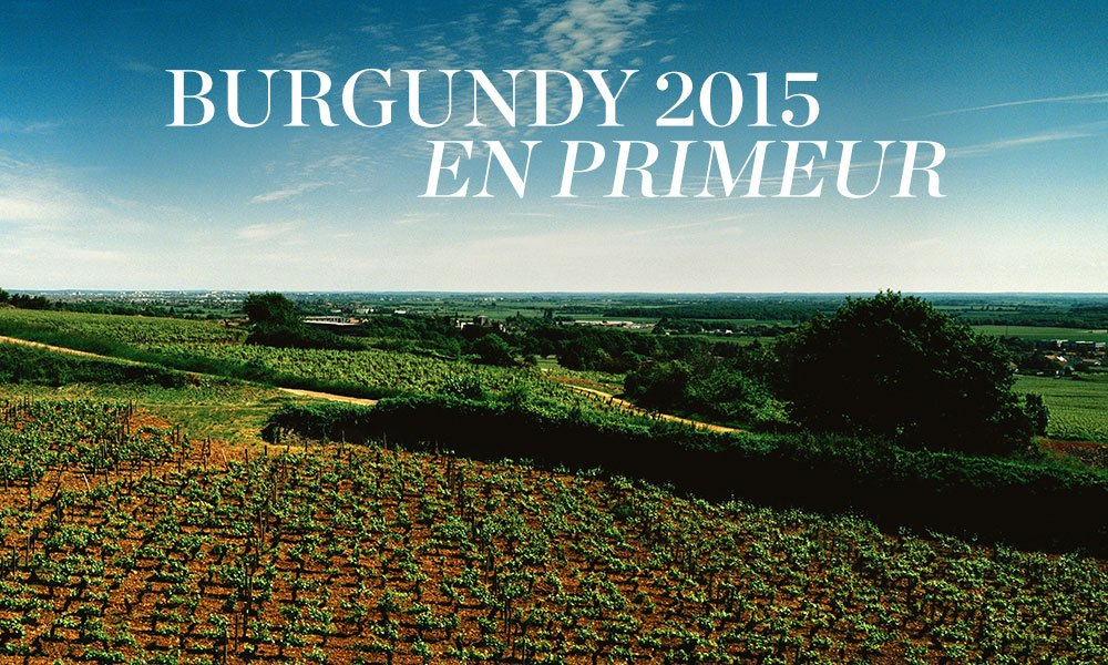 Burgundy 2015: An outstanding vintage