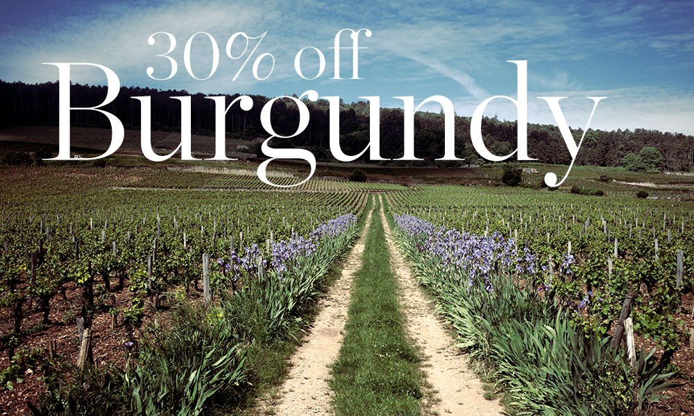 Discounts on wines from Meursault, Nuits-St Georges and beyond available at Berry Bros. & Rudd