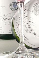 2002 Nuits St-Georges, Boudots, 1er Cru Domaine Jean Tardy et Fils