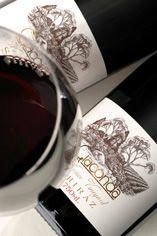 2002 Giaconda Warner Vineyard Shiraz, Victoria